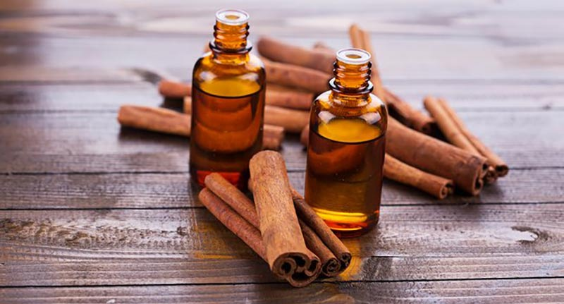 Introducing cinnamon and its properties
