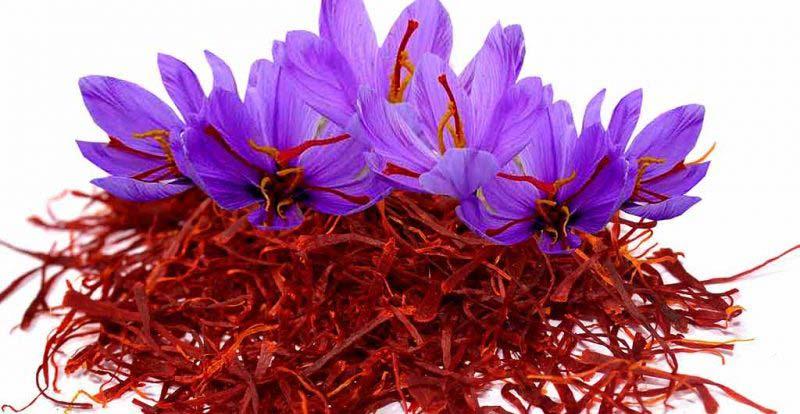 طبیعت زعفران چیست؟