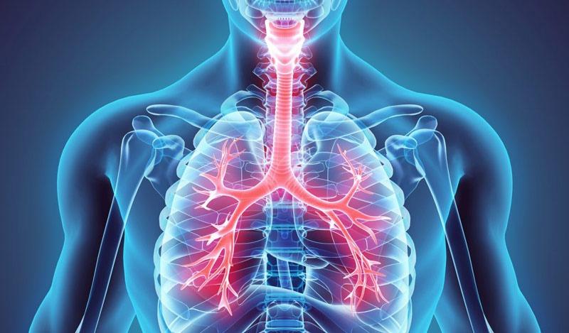 بهبود بیماری های تنفسی با هل