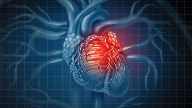 سلامت بیشتر قلب با هل